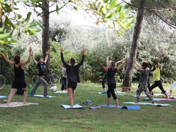 Yoga Sous La PinÈde