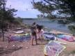 Découvrir les plaisirs de la glisse en mer ou en étang