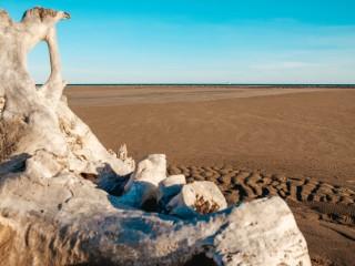 La magie d'une plage sauvage