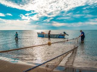 Une matinée de pêche traditionnelle