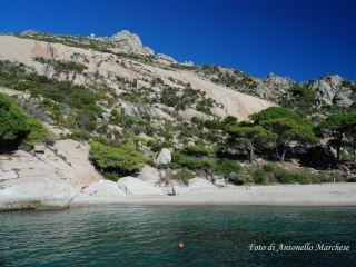 Ile de Montecristo