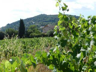 Chemin du Beausset au Castellet