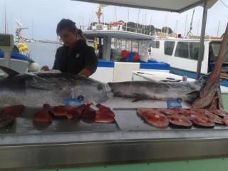 Les étals de poissons
