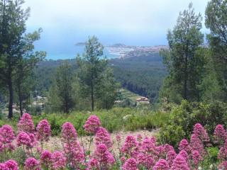 Balade & Nature