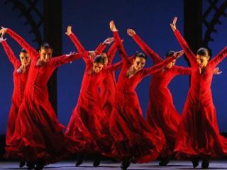 Spectacle hors les murs/Les nuits flamencas