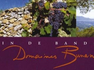 Art et vin aux Domaines Bunan