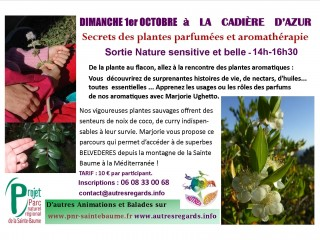 Balade : Secrets des plantes parfumées et aromathérapie le 6/12