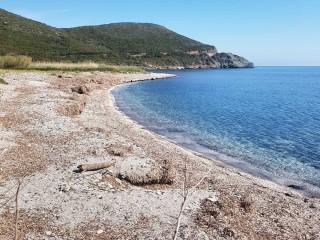Plage de Murteda - Meria - Cap Corse capicorsu