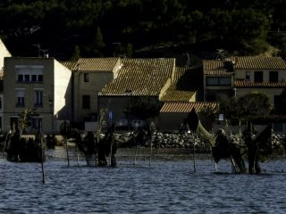 Les étangs de Gruissan