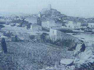 L'histoire de la vigne et du vin à Gruissan