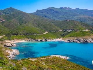 Alisu - Cap Corse Capicorsu