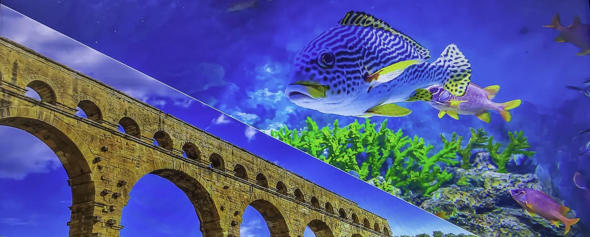Aquarium et le jardin du Mas de la Serra