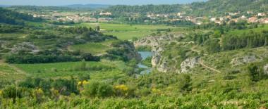 Un village vigneron