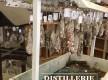 Distillerie Agricole Pietracorbara© - Cap Corse