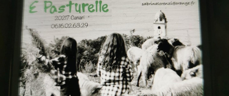 E Pasturelle© - Fromage de Brebis - Canari - Capicorsu