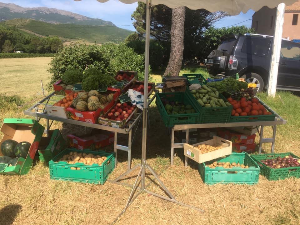 SARL Polyculture - Elevage - Patrick Tomei - Cap Corse Capicorsu
