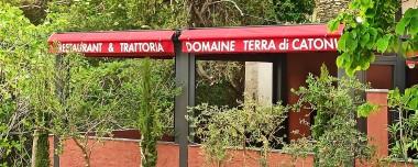Restaurant Trattoria - Domaine Terra di Catoni© - Erbalonga - Cap Corse