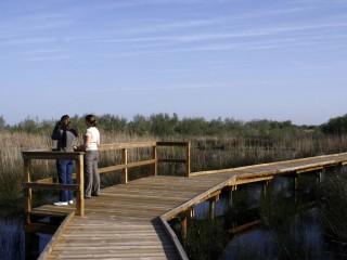 Réserve naturelle régionale du Scamandre