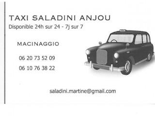 Taxi Saladini Anjou