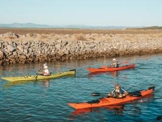 Naviguez en canoë le long des plages sauvages de Gruissan