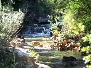 Les sources de la Clape – géologie et biologie