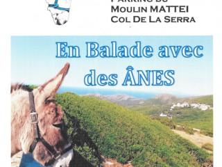 Macchi\'âne - Balades avec un Ane - Ersa - Cap Corse