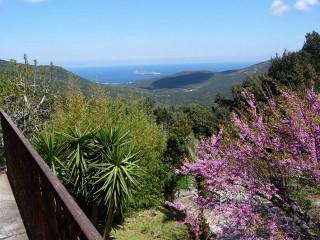 Casa A Rota*** - Meublés de Tourisme - B&B - Ersa - Cap Corse