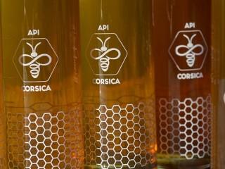 Api Corsica - Cap Corse Capicorsu
