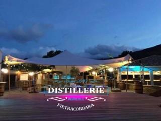 Les Chambres de la Distillerie de Pietracorbara - Cap Corse Capicorsu