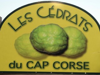 Les Cédrats du Cap Corse - Capicorsu