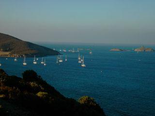 Tamarone - Cap Corse Capicorsu