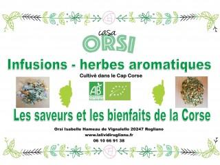 Casa Orsi - Cap Corse Capicorsu