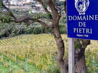 Domaine de Pietri - Cap Corse Capicorsu