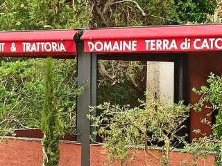 Cantina di Catoni - Domaine Terra di Catoni - Erbalunga - Cap Corse